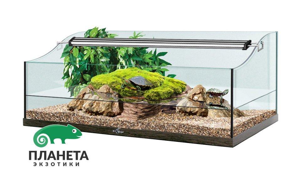 Купить аквариум для черепахи красноухой пластиковый